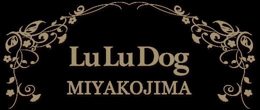 都島区のドッグサロン LuLuDog都島店